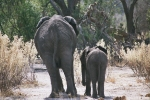 Mom and Child, Botswana, Africa