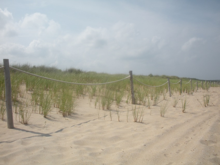 Rehoboth Beach, Delaware, United States